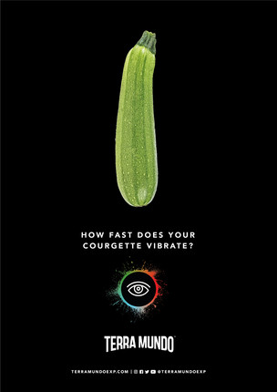 HOG0009 TM PR Adverts_v1_COURGETTE.jpg