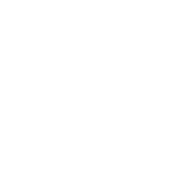 Boomtown_Productions.png