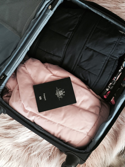 Carry On Rose Luxe packed discreet.jpg