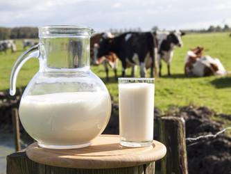 молоко-4.jpg