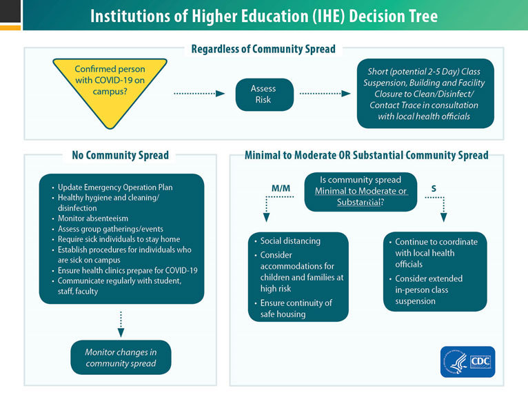 higher-education-decision-tree.jpg