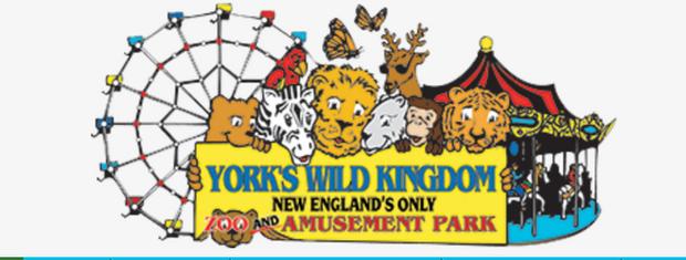 York's Wild Kind