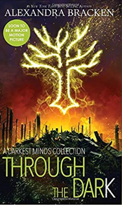 Through the Dark: A Darkest Minds Collection