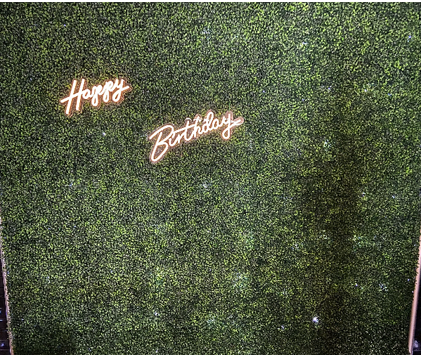LED HAPPY BIRTHDAY SIGN.png
