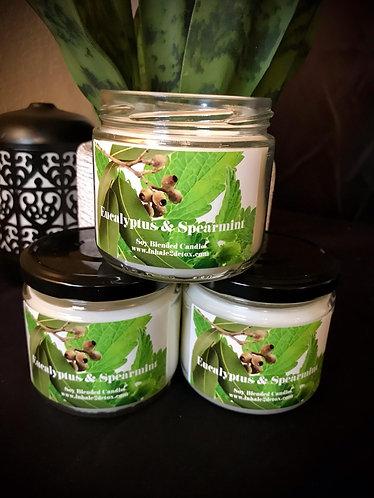Eucalyptus & Spearmint 12oz Soy Blended Candle