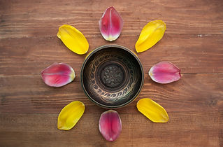 sintulip-petals-background-top-view_8877