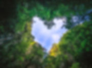 heart-shaped-photography-sky-rain-forest