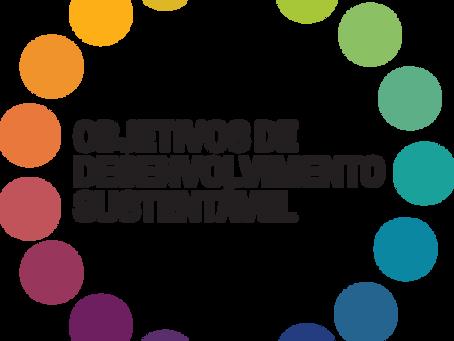 ODS - Objetivo de Desenvolvimento Sustentável