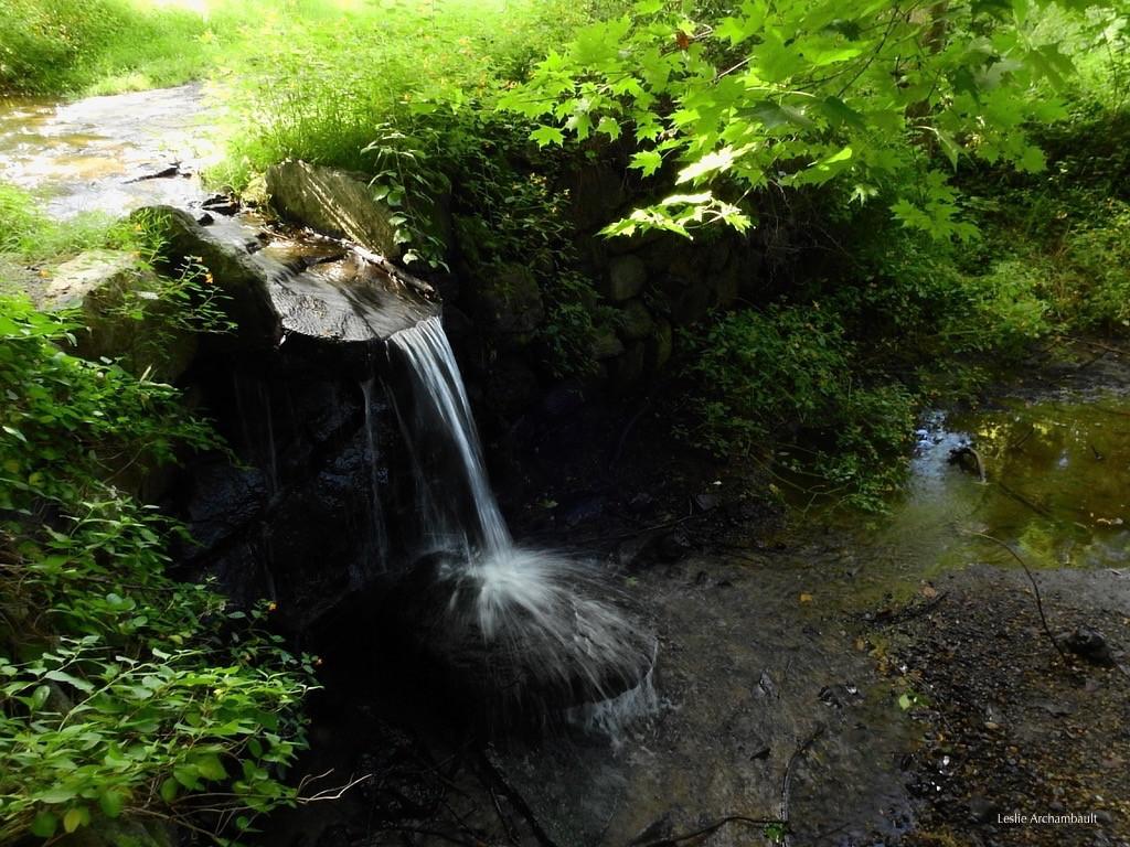chase waterfalls.jpeg