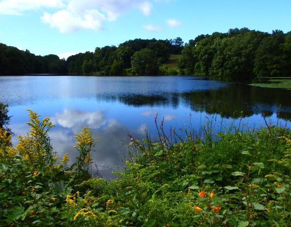 Swan Lake at Rockefeller Park.jpg
