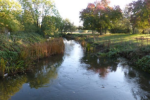 whistly river 16.JPG