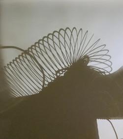 Martinson, Libby Shoe Rayograph