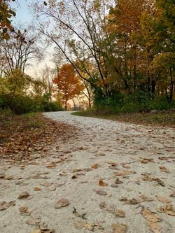 Martinson, Libby Path