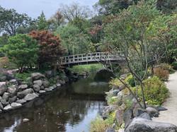 Hernandez Edward Bridge