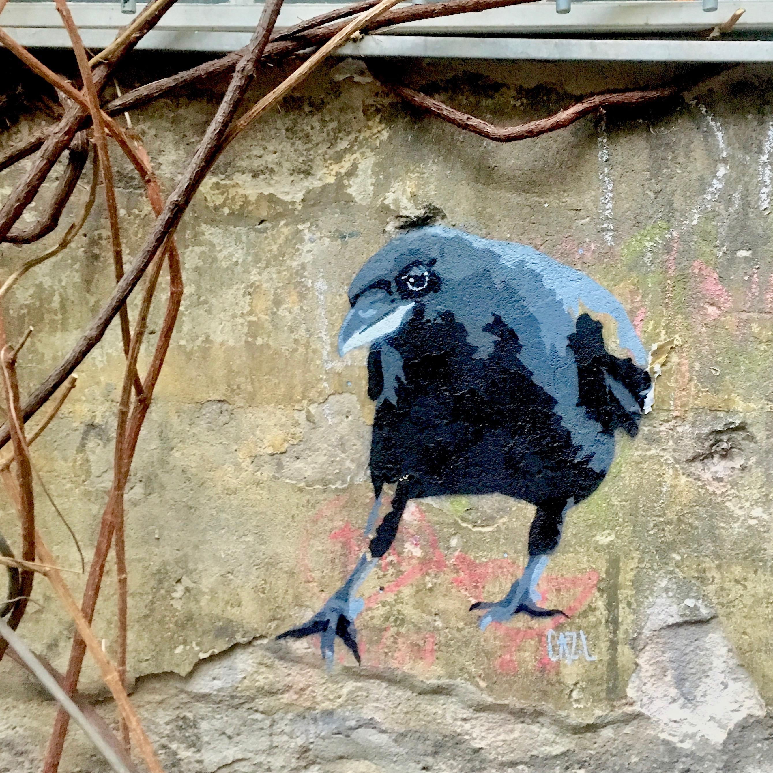crow XIIII