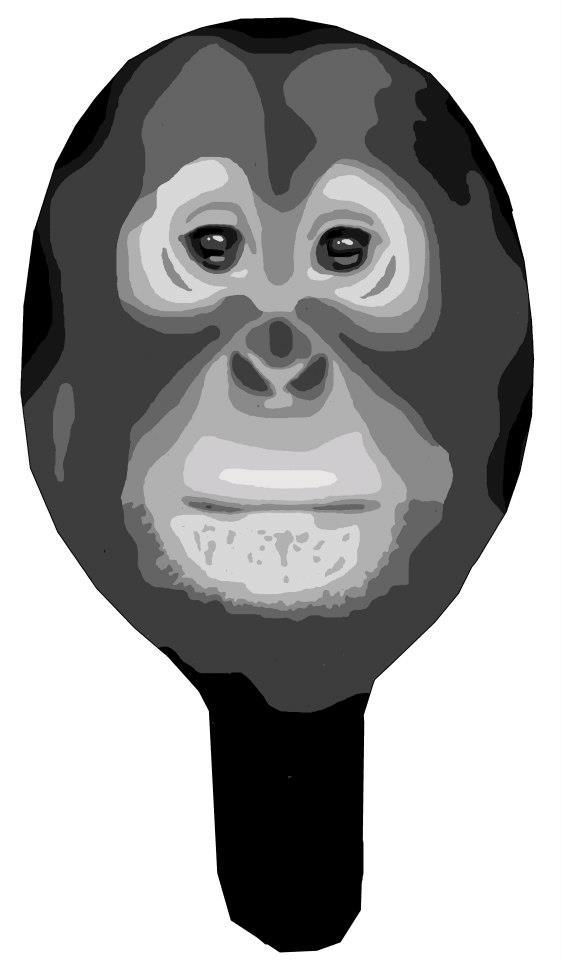 Mask: Monkey