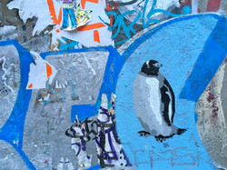 Nu Pinguin In Town