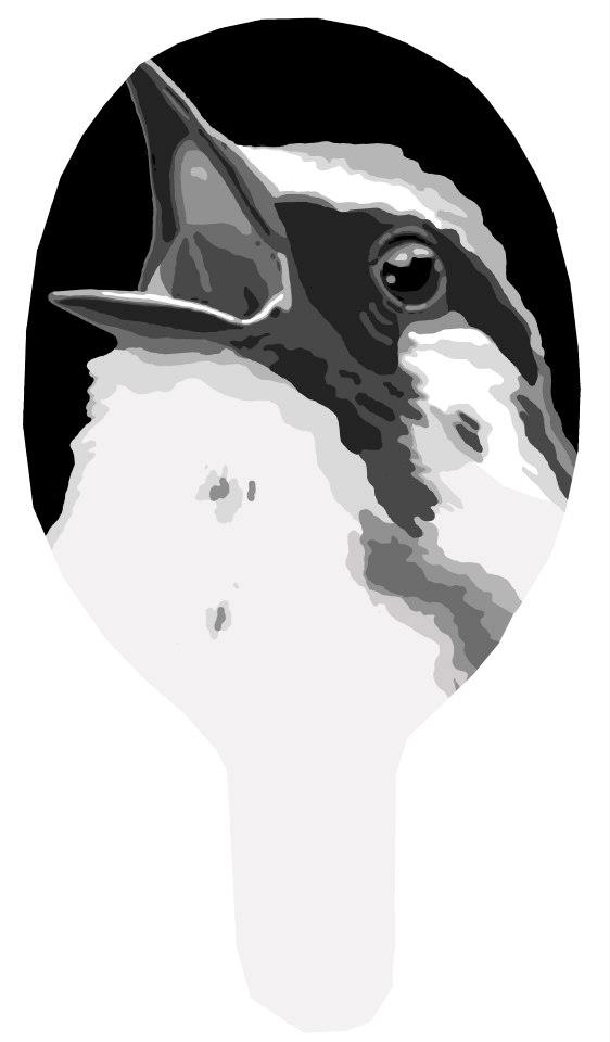 Mask: Singing Bird