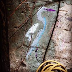 Hidden Waterbird /Bln