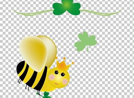 BEE PATRICK'S DAY!!!