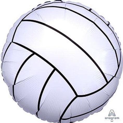 18C CHAMPIONSHIP VOLLEYBALL sports
