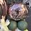 Thumbnail: Custom Birthday display 30th 40th 50th 60th 70th