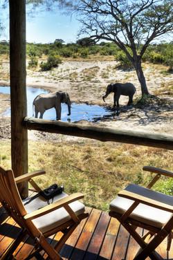 7 Day Botswana Wildlife Explorer