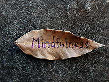 Mindfulness written on a dried leaf.jpg
