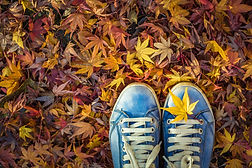 Autumn season in hipster style shoes.jpg