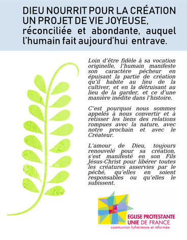 Résolution_synode_1.png