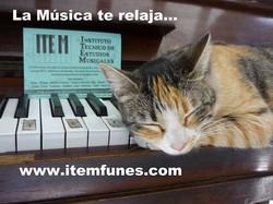 Facebook - www.itemfunes.jpg