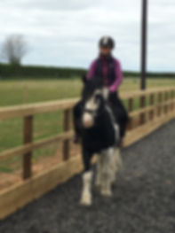 Riding lesson at Toll Bar Equestrian