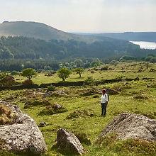 Dartmoor.jpg