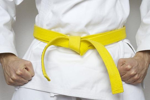 Karate Yellow Belt Subscription (Complete Training With Certification)