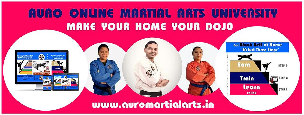 Auro online Martial Arts University.jpg