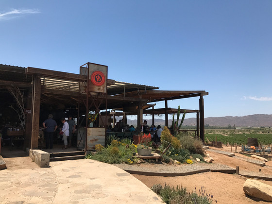 A Taste of Valle de Guadalupe, Mexico
