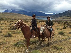 Chile, Patagonia Horses.jpg