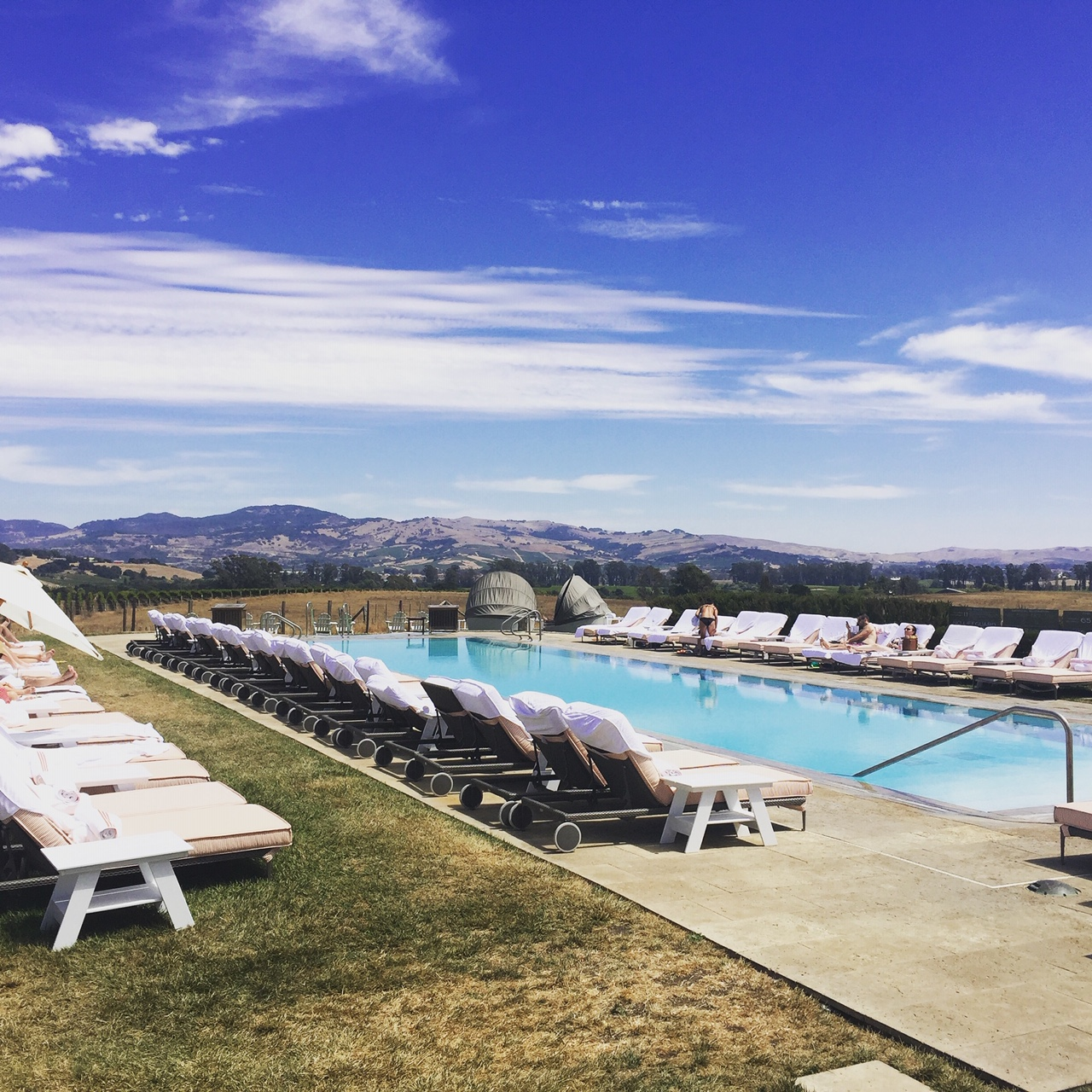 Napa, Carneros Pool