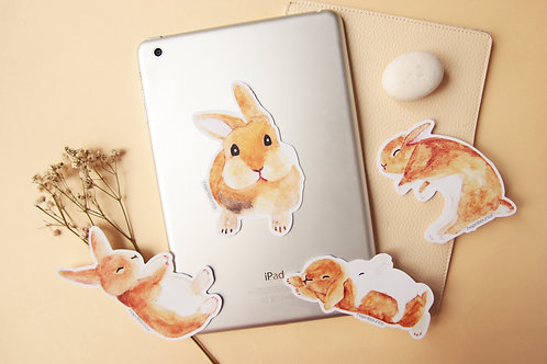 Toffee Rabbit Stickers
