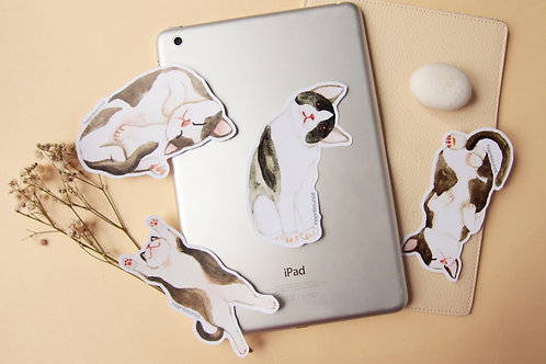 Syrup Cat Stickers