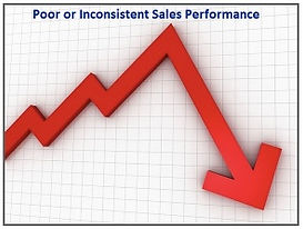 Poor Software Sales Performance.