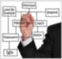 Software Sales Management