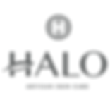 HALO-LogoWithMark.png