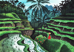 THE RICE TERRACE