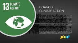 SDG Goal 13