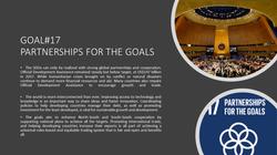 SDG Goal17