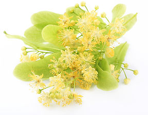 extract of linden blossom