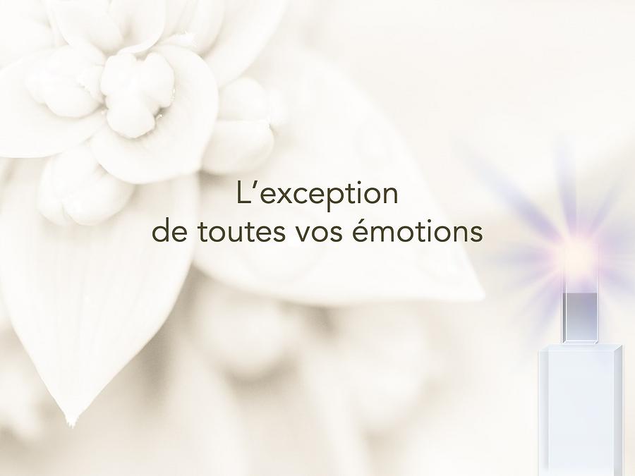 exception_de_toutes_les_émotions.png