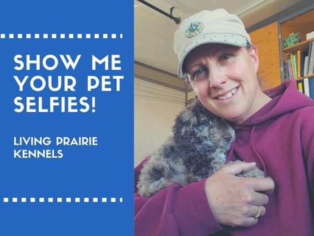 Show Me Your Pet Selfies!