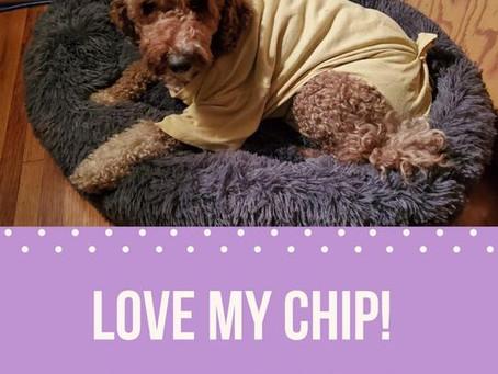 LOVE MY CHIP!